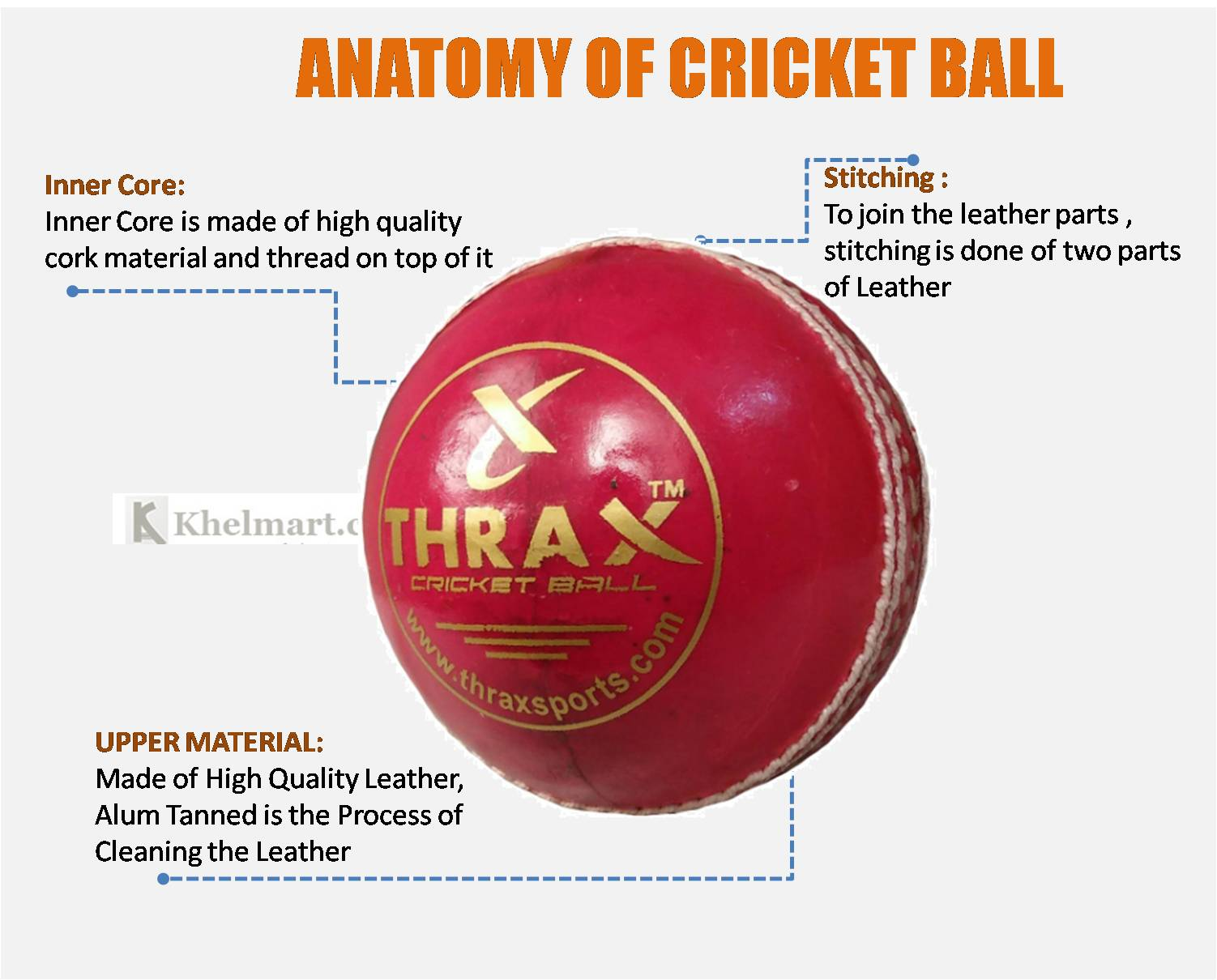 ANATOMY_OF_CRICKET_BALL_khelmart.jpg