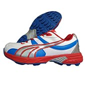 Gravity Stud Cricket Shoes White,Red and Blue