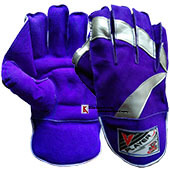 Virlok Player Wicket Keeping Gloves